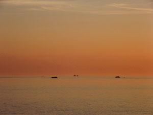 De la Pointe St Mathieu (29). RLM 2012