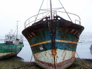 Vieux bateau de Camaret. (29) RLM 2012