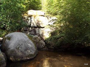 Douceur de la Forêt d'huelgoat (29) RLM 2012