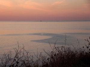 De la Pointe St Mathieu (29) RLM 2012