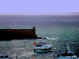 Port du Conquet (29)