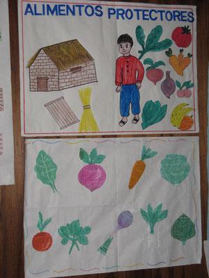 Nouvelles connaissances acquises par des enfants à partir du Potager Educatif d'une école des Andes (Cusco - Pérou)