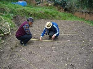 La création des chemins du Potager Educatif de l'Université de Pasco (Pérou)