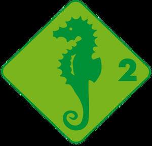 Grundlagentest Schwimmabzeichen Seepferd