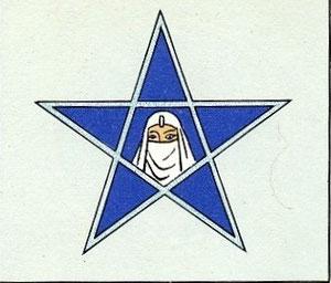 Insigne du GB I/63 1ère escadrille