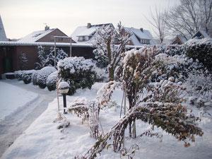 Schnee vom vorigen Jahr