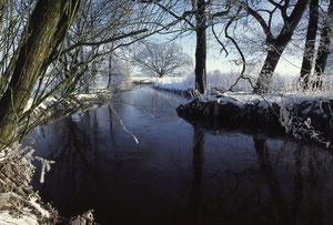 so schön ist die Treene im Winter
