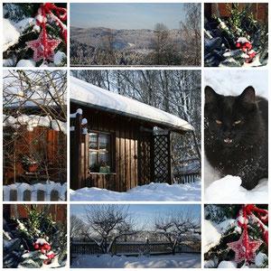 Winter auf Hinterdietzberg