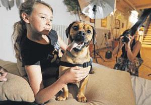 Lächeln bitte: Die Suche nach Hunde-Models ist  nicht nur für die Vierbeiner anstrengend. FOTO:ARTIS