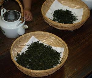 出来上がった手作りのお茶
