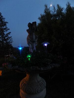 Von der Terrasse haben Sie den direkten Blick auf unseren Brunnen mit bunt beleuchteten Lichtern.