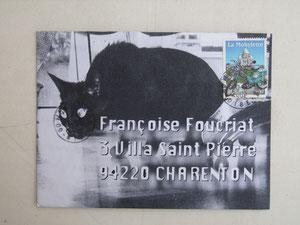 vous n'avez jamais vu une chatte noire?
