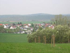 """Streuobstwiese """"auf dem Stümper """""""