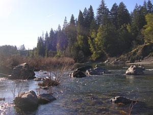 Quietude en bord de riviere.