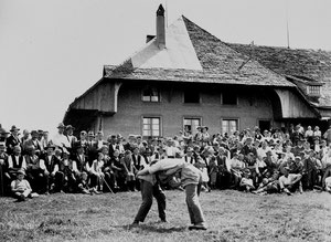 Ahorn, Schwingfest (AH 4)
