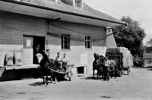 Hofstatt, Rüediswil, Futtermittel und Landesproduktehandlung Galliker 1940  (LW 13)