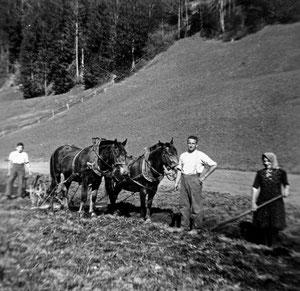 Luthern Bad, Bodenenzi, Ackern Familie Roos, von links Josef 1935, Julius 1925, Walburga 1924 Roos, um 1946  (LW 8)