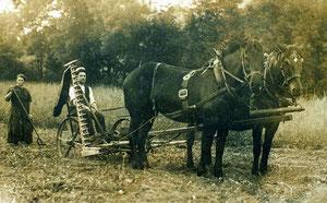Hofstatt, Rüediswil, Dubach Josef, Jahrgang 1899, mit Magd, Mähwerk mit Pferden  (LW 1)