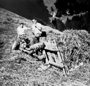 Luthern Bad, Öschgraben, gekippter Einachser mit Heu  (LW 10)