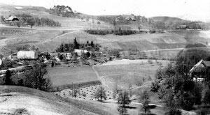 Hofstatt, Rüediswil, Sicht von Bäumen, Ansichtskarte mit Poststempel 1930, Foto Lustenberger, Hofstatt  (Ho 4)
