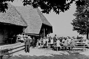Ahorn, Schwingfestbesucher (AH 5)