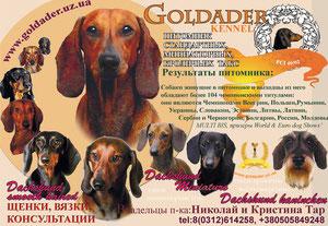 Goldader kennel