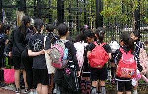 平川動物公園での観察の様子