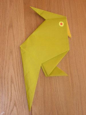 PERROQUET - On peut porter ce perroquet sur l'épaule !