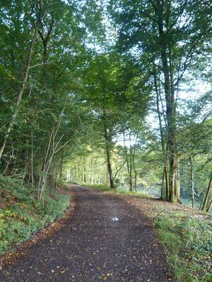 September 2009: Transardennaise: 160 km vu La Roche (B) bis op Bouillon (B)