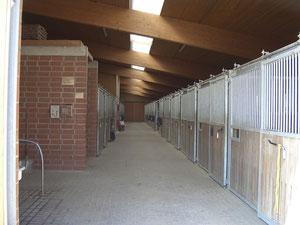 Stall/ Pferdeboxen