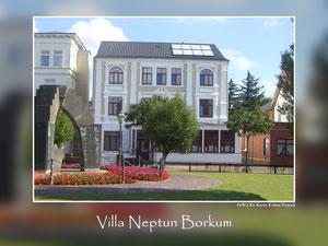 Villa Neptun 2011
