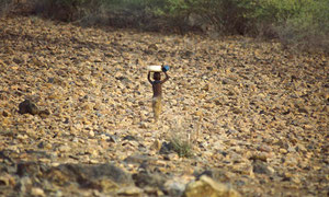 Bambina Turkana trasporta acqua