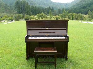 通称 シューべピアノ