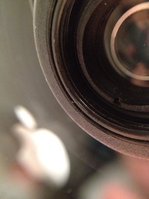 photos taken with iPhone and olloclip macro lens