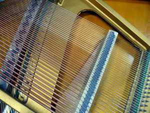 弦を磨きます。上部3分の1が、磨き終わっています。
