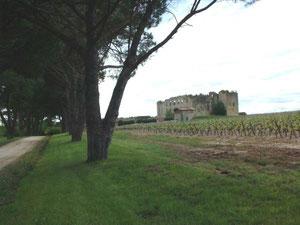 Le château de Fargues