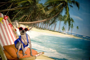 Chini Beach  - Chini пляжница