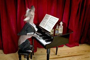 Chini Concert - Chini пианист