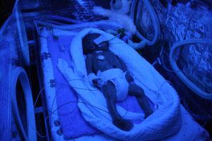 blaue Stunde im Inkubator