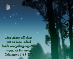 Colossians 3:14