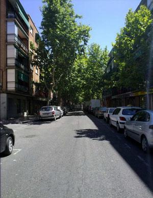 Calle Mayor (a la altura de Santa Gema) 2008