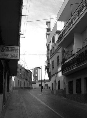 Calle arboleda desde abajo 2012 por Oliver
