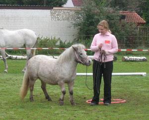 Tammy und ich in der Freundschaftsprüfung auf dem Hausturnier auf Hof Larsson 2006
