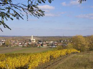 Der Weinort Platt