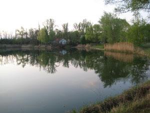 Bahnweiher mit Fischerhütte