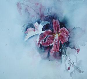 Lilie aus Gertruds Garten