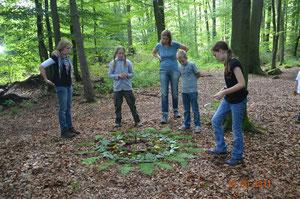 Aus verschiedenen Naturmaterialien wurde ein Waldmandala gelegt. Dazu benutzten wir Farn , Zapfen, Moos, Steine, Rinde usw.