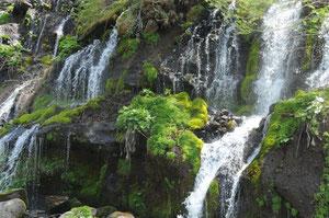 5月22日 新緑にもえる弩龍の滝に全員で、ハイキング。マイナスイオンをいっぱい浴びて、リフレッシュできました。