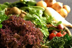 無農薬野菜 野菜セット スリーエフ農法