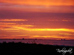 Sonnenaufgang Sanibel Island
